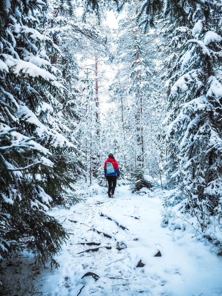 Nuuksio, luonnonpuisto, vaeltaminen, reitit, mitä on ystävyys, minkälainen on hyvä ystävä, ystävän huonot puolet, onko mulla riittävästi ystäviä, paras ystävä, miksi mulla ei ole parasta ystävää, oivalluksia, metsässä, kävely, luontokuvaus, Fjällraven