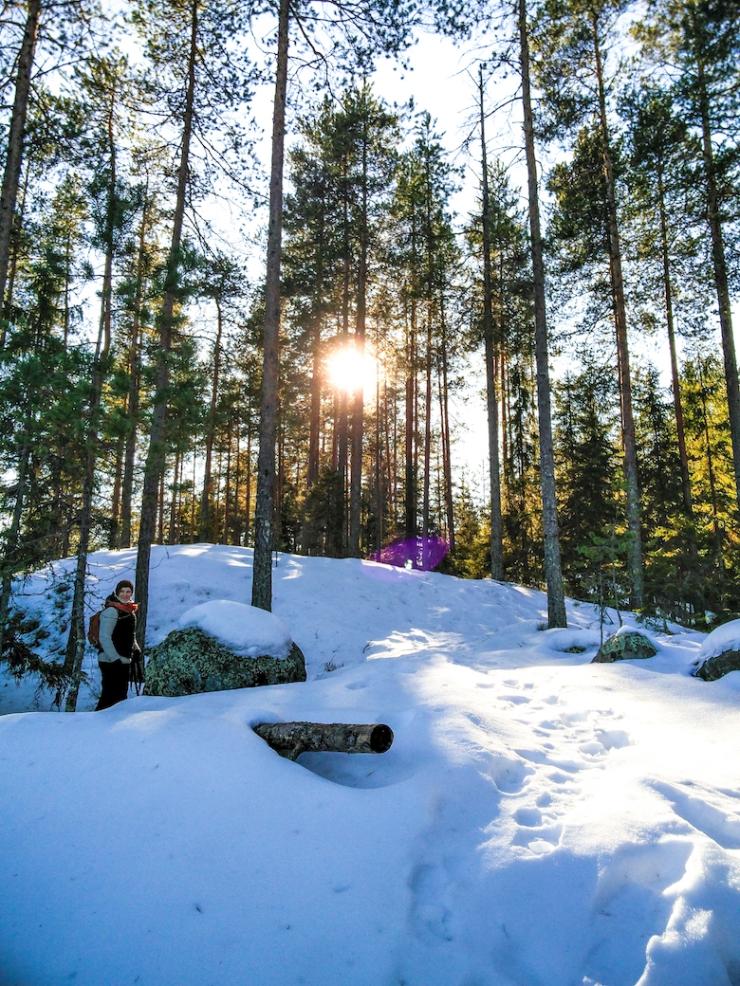 Repoveden kansallispuisto, luontopolku, Retkipaikka, paras luontopolku Suomessa, retkeily, vaeltaminen, suosittelu, Janina Michaela, lifestyle-bloggaaja, matkustelu, taianomainen Suomi