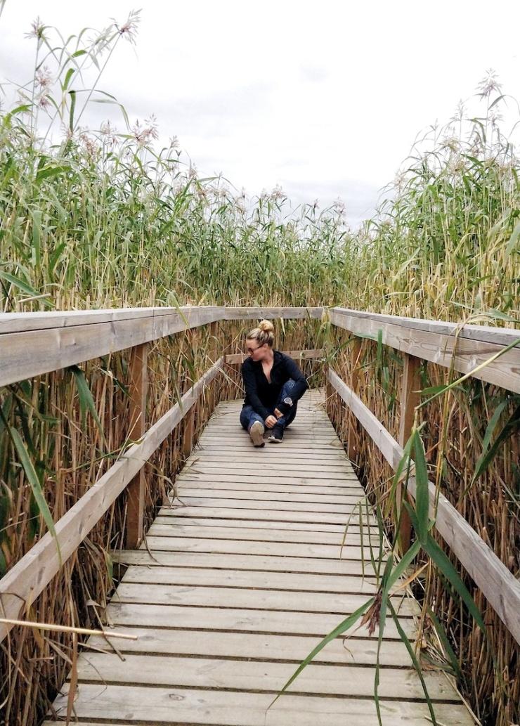 Janina Michaela, bloggaaja, somevaikuttaja, ilmastonmuutos, Before the flood, dokumentti, ajatuksia, luonto